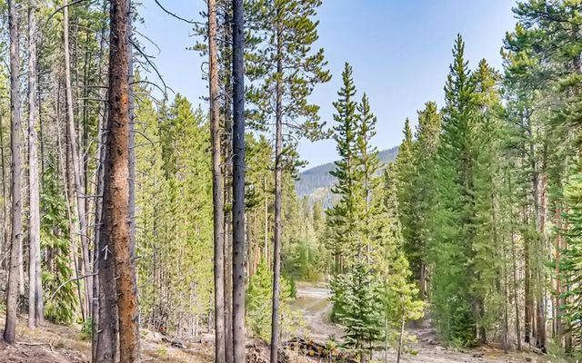 66 Apex Circle BRECKENRIDGE, CO 80424