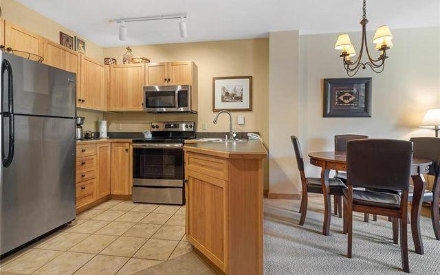 Buffalo Lodge And The Dakota Condos 8326 - photo 13