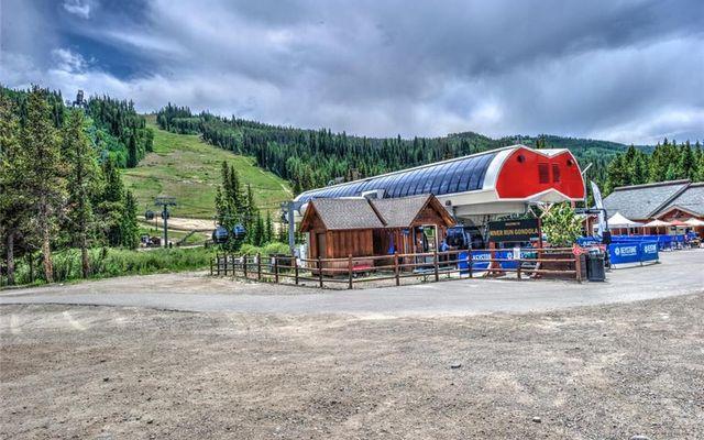 Buffalo Lodge And The Dakota Condos 8326 - photo 21