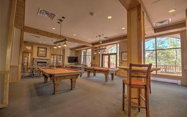 Buffalo Lodge And The Dakota Condos 8326 - photo 25
