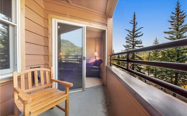 Buffalo Lodge And The Dakota Condos 8326 - photo 4