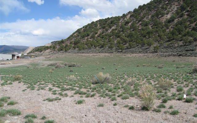 000335 McGregor Drive Gypsum, CO 81637