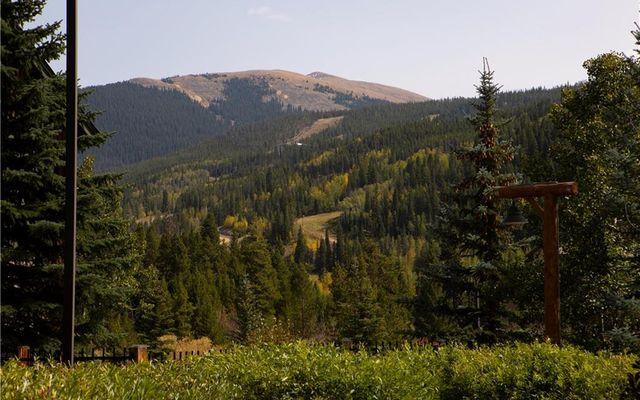 Tenderfoot Lodge 2605 - photo 22