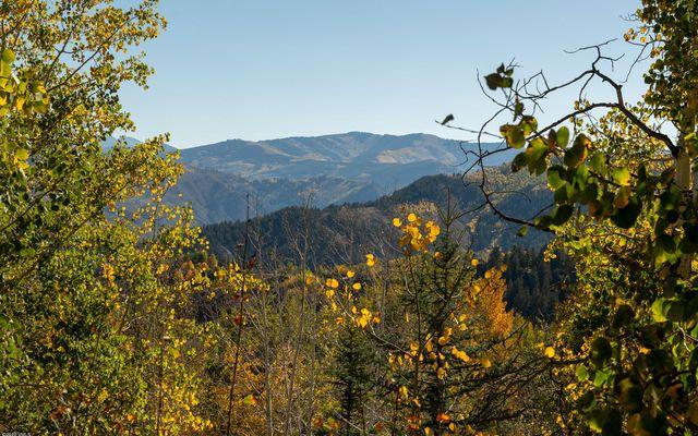 919 Bachelor Ridge - photo 12