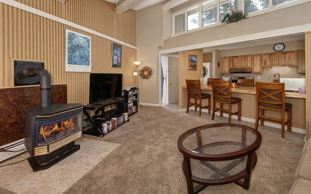 1115 Ski Hill Road #82 BRECKENRIDGE, CO 80424
