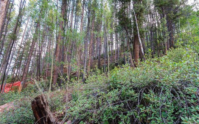 78 Pennsylvania Creek Trail - photo 11