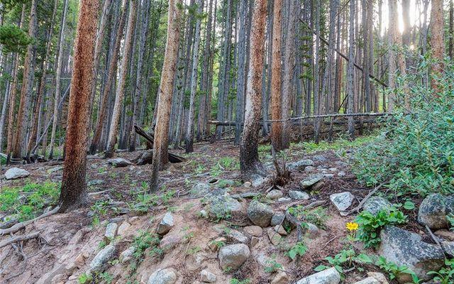 78 Pennsylvania Creek Trail - photo 3
