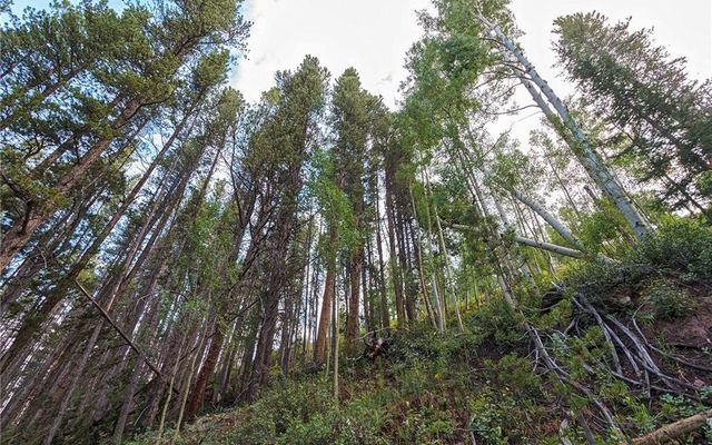 78 Pennsylvania Creek Trail - photo 6