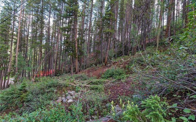 78 Pennsylvania Creek Trail - photo 7