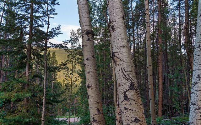 78 Pennsylvania Creek Trail - photo 9