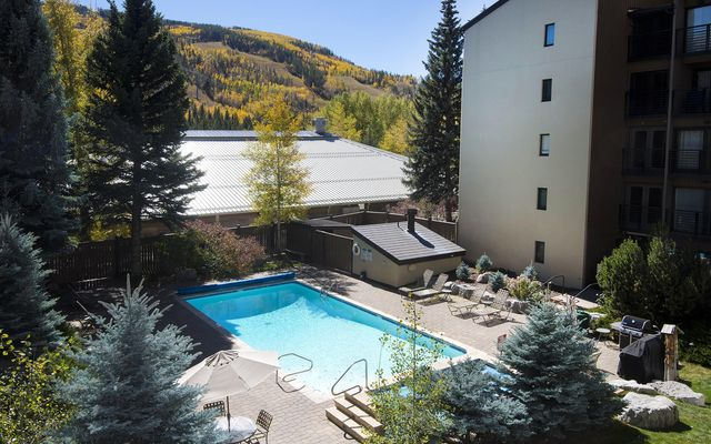 Vail International 207 - photo 11