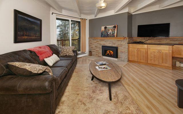 Treehouse Condo 102 - photo 2