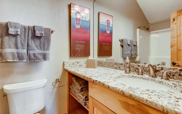 Frisco River Townhomes E - photo 16