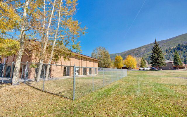 Dillon Valley East Condo 301 - photo 29