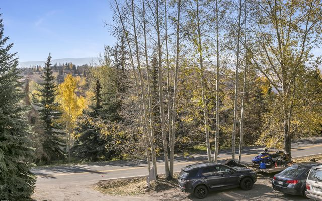 Snowberry Townhome 2 - photo 22
