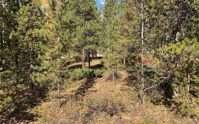 260 Elk Circle - photo 9