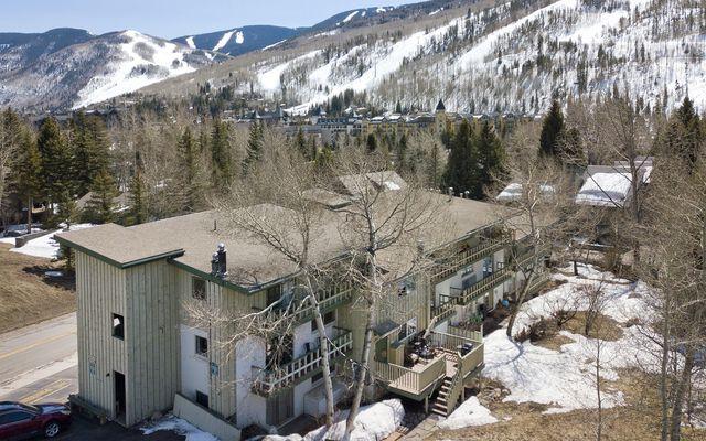 Aspen Tree 9 - photo 16