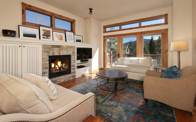 127 Woods Drive #18 BRECKENRIDGE, CO 80424