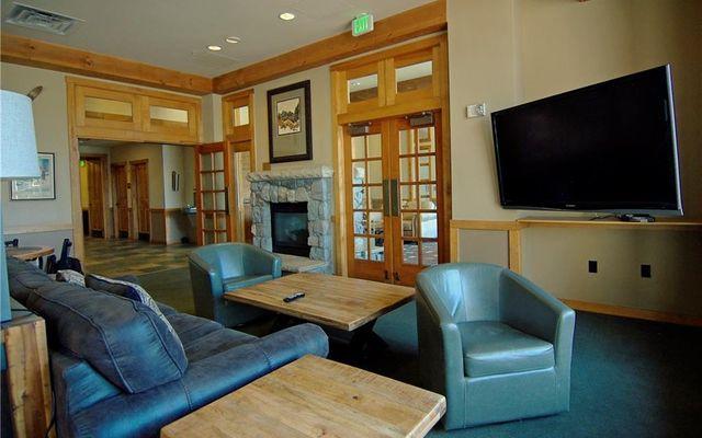 Buffalo Lodge And The Dakota Condos 8367 - photo 21