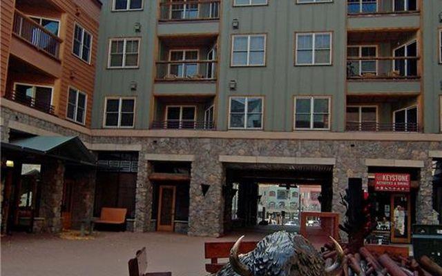 Buffalo Lodge And The Dakota Condos 8367 - photo 23