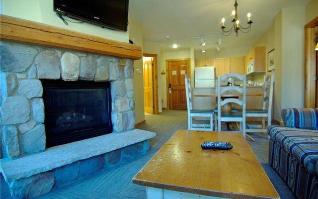 Buffalo Lodge And The Dakota Condos 8367 - photo 7