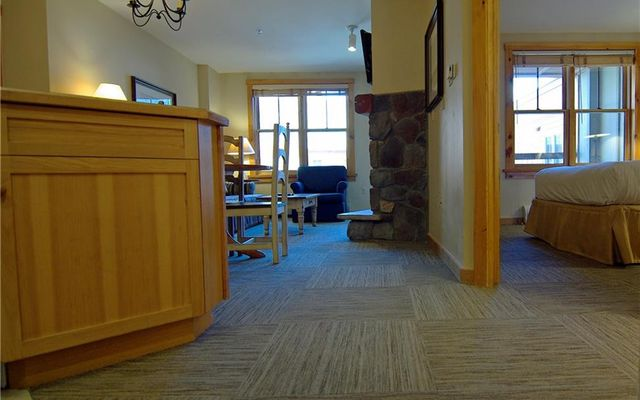 Buffalo Lodge And The Dakota Condos 8367 - photo 9