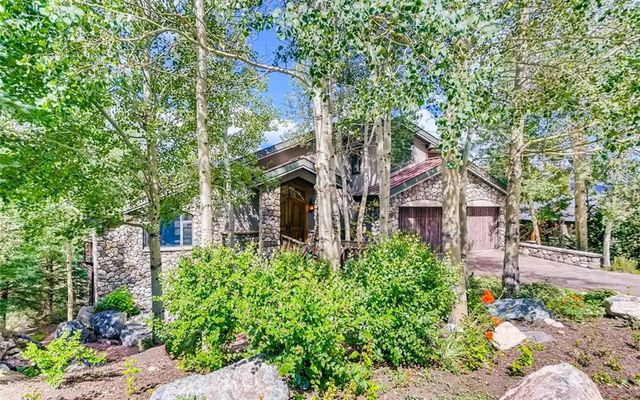 313 S Gold Flake Terrace BRECKENRIDGE, CO 80424