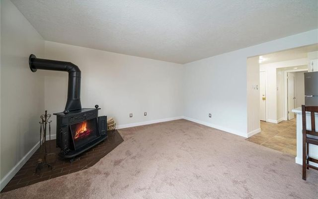 Dillon Valley West Condo 103 - photo 5