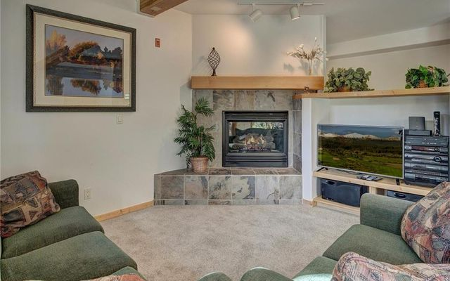 Twin Elk Lodge 5 - photo 4