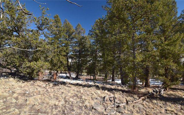 4437 Middle Fork Vista - photo 5