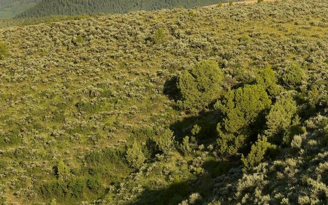 64 Avalanche Peak Way Eagle, CO 81631