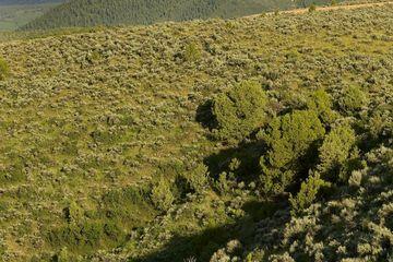 64 Avalanche Peak Way Eagle, CO