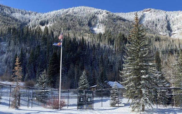 Vail Racquet Club Condos 5 - photo 40