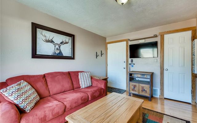 Timber Lodge At Lake Dillon G - photo 4