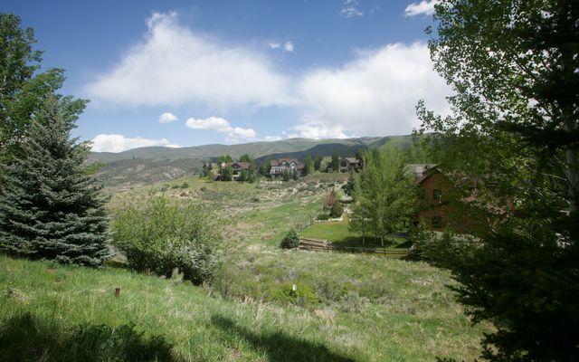 237 Remington Trail - photo 1