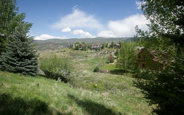 237 Remington Trail - photo 2