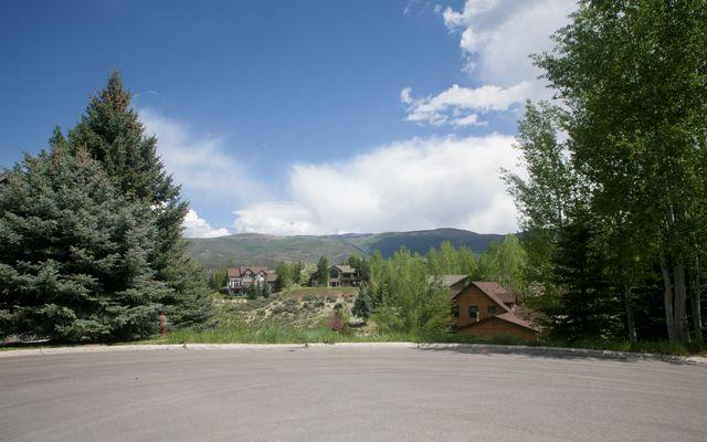237 Remington Trail - photo 3