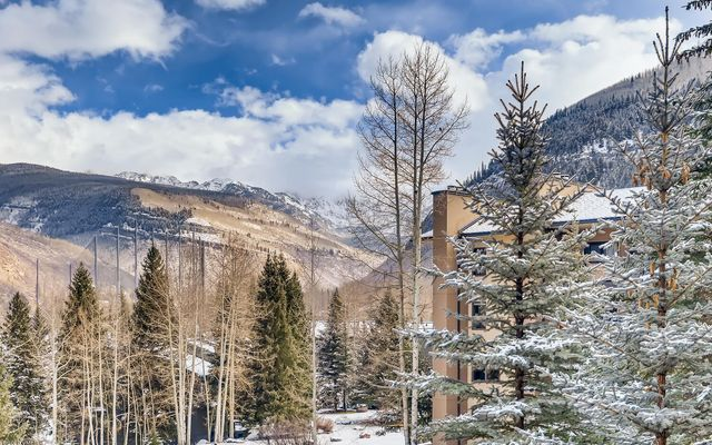1650 Fallridge #308 Vail, CO 81657