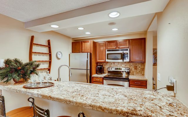 Fall Ridge Condo 308 - photo 5
