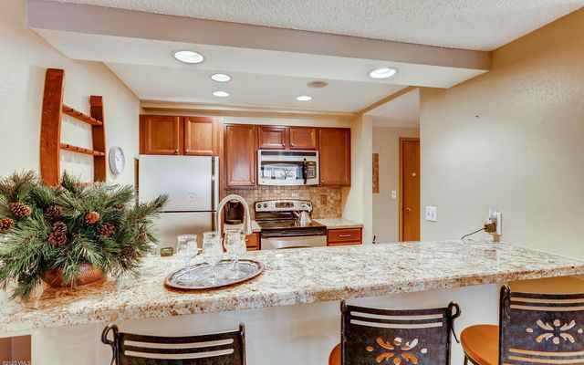 Fall Ridge Condo 308 - photo 6