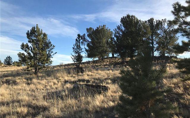 1658 Navajo Trail HARTSEL, CO 80449