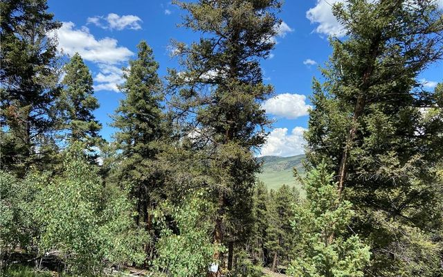 3806 Middle Fork FAIRPLAY, CO 80440