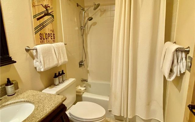 Lenawee Condo 1731 - photo 14