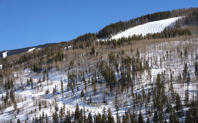 Overlook At Vail 5 - photo 42