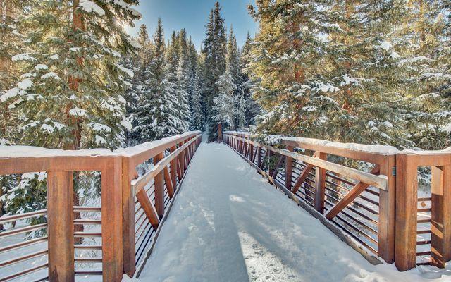 12 Union Creek Trail #203 - photo 28
