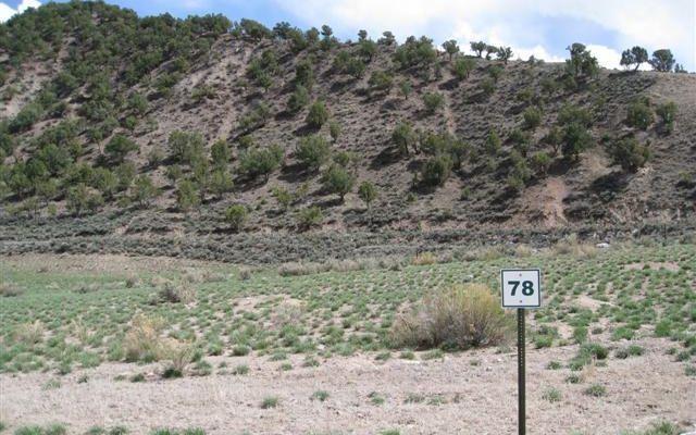 000335 Mcgregor Drive - photo 1