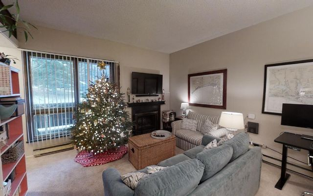 225 Gopher Road H53 Eagle-Vail, CO 81620