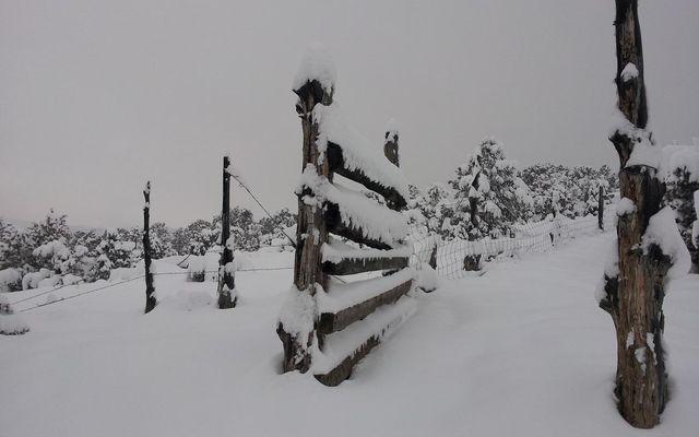611 Mesa Drive - photo 49