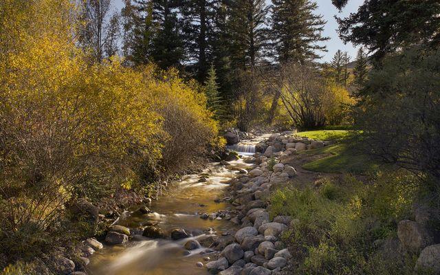 25 West Lake Creek Road - photo 14