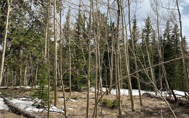 270 Co Rd 667 - photo 3